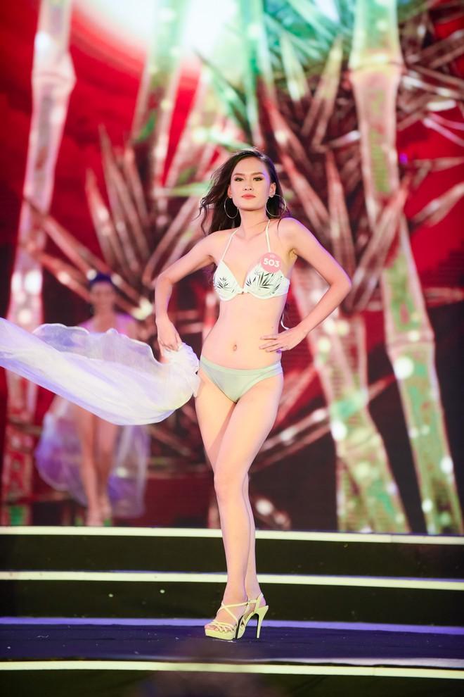 Màn diễn bikini nóng bỏng của 38 thí sinh lọt chung khảo phía Bắc Hoa hậu Việt Nam - Ảnh 8.