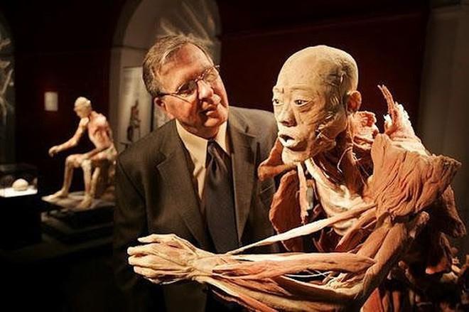 [ẢNH] Cận cảnh triển lãm xác người đầy ám ảnh được tổ chức ở TP.HCM sau khi Hà Nội không cấp phép - Ảnh 12.