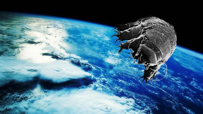 Trái đất có thể bị hủy diệt, nhân loại có thể biến mất, nhưng sự sống trên hành tinh này sẽ luôn tồn tại - Ảnh 7.