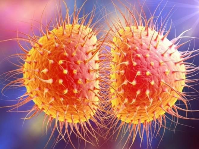 Các bệnh lây truyền qua đường tình dục tàn phá sức khỏe sinh sản thế nào? - Ảnh 1.