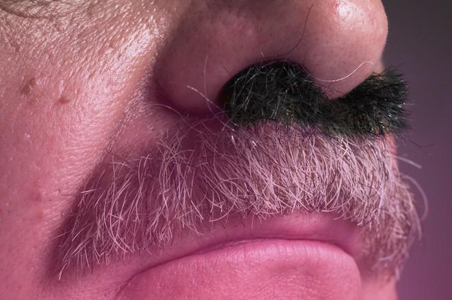 Thói quen cắt, nhổ lông mũi có hại hay vô hại: BS Mỹ giải thích cực chuẩn, ai cũng phục - Ảnh 1.