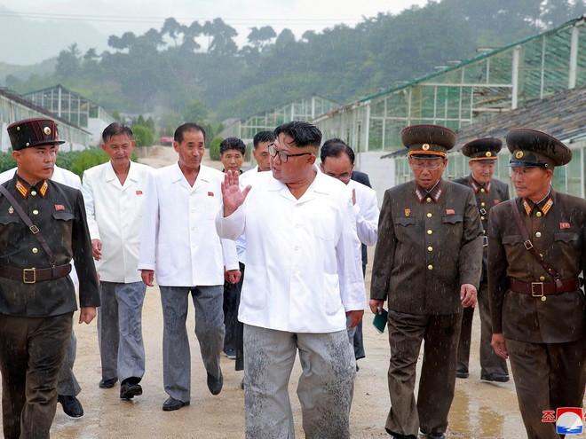 Triều Tiên lần đầu công bố hình ảnh gây sốt: Nhà lãnh đạo Kim Jong-un dầm mưa đi thị sát - Ảnh 9.