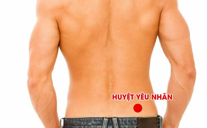 Huyệt yêu nhãn: Huyệt vị nổi tiếng giúp cố tinh, ích thận, thanh lọc cơ thể và thải độc