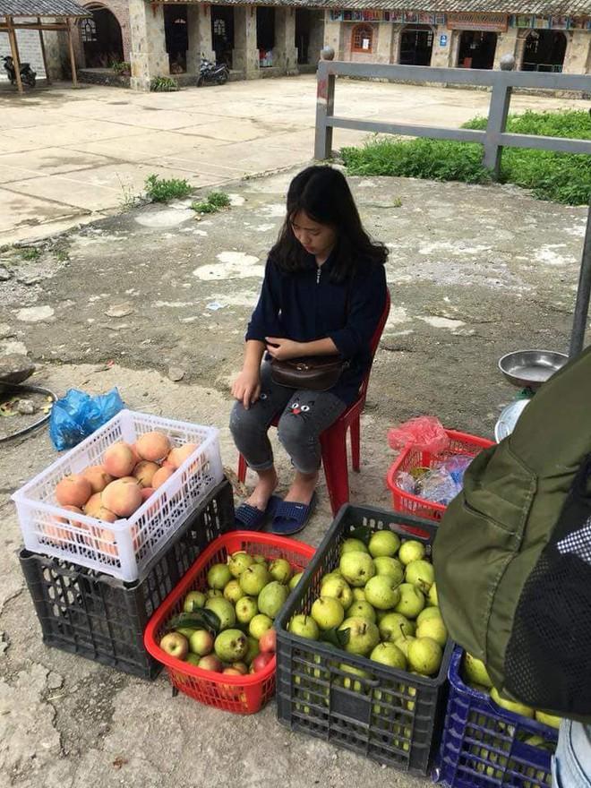 Bán hoa quả ở Hà Giang, cô gái 15 tuổi khiến chàng trai đòi làm rể, dân mạng nhận ra người quen cũ - Ảnh 4.