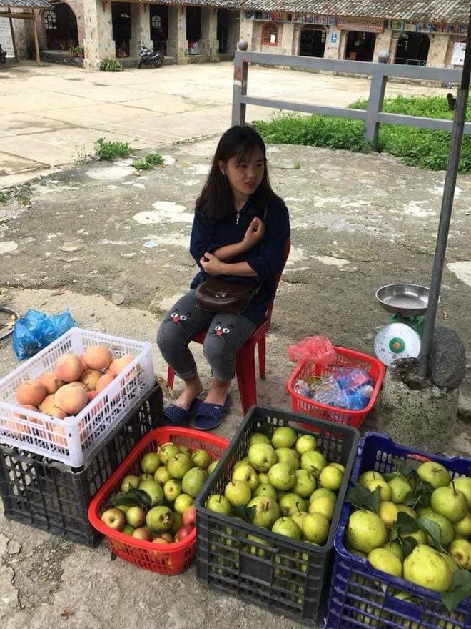 Bán hoa quả ở Hà Giang, cô gái 15 tuổi khiến chàng trai đòi làm rể, dân mạng nhận ra người quen cũ - Ảnh 3.