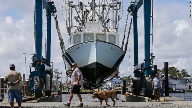 Tàu thuyền ở khu vực ven biển bang Bắc Carolina được neo đậu cố định. Nguồn: AP