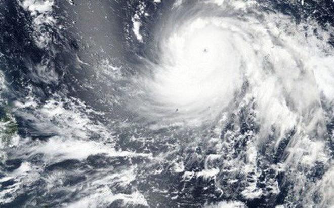 Siêu bão lịch sử đổ bộ Hong Kong, người dân vội vã tích trữ lương thực để cầm cự