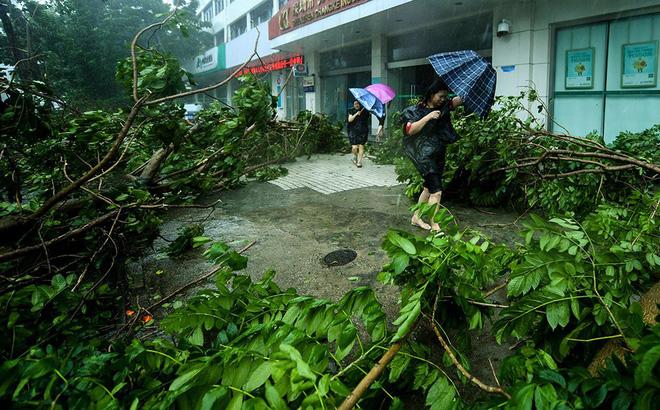 Siêu bão Mangkhut vừa đổ bộ vào tỉnh Quảng Đông, Trung Quốc với sức gió hơn 160 km/h - Ảnh 3.