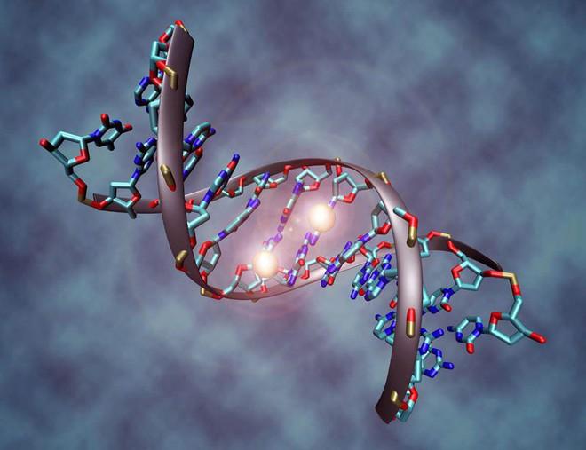 5 yếu tố  lớn nhất có nhiều khả năng gây ung thư gan: Dù bạn ở lứa tuổi nào cũng nên tránh - Ảnh 5.