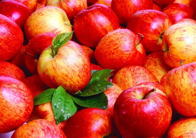 4 loại rau quả là vua thải độc và trẻ hóa: Bạn nên ăn để loại bỏ độc tố ra khỏi cơ thể - Ảnh 3.