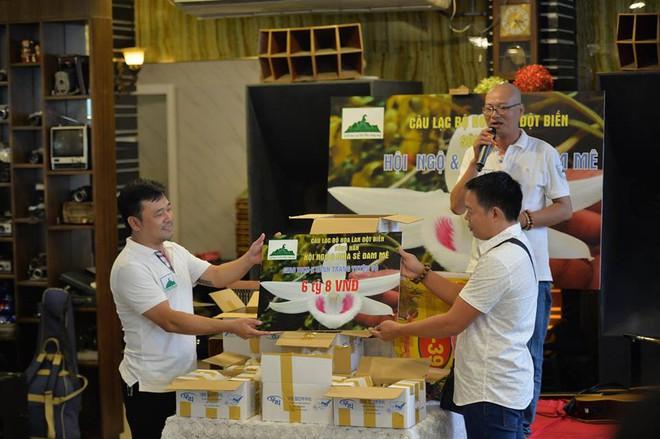 Cận cảnh gốc lan Giã Hạc 5 cánh trắng có giá gần 7 tỉ đồng ở Đà Nẵng - Ảnh 8.