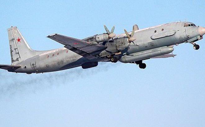 Syria thẩm vấn hàng loạt sĩ quan vì vụ máy bay Il-20 của Nga bị bắn rơi