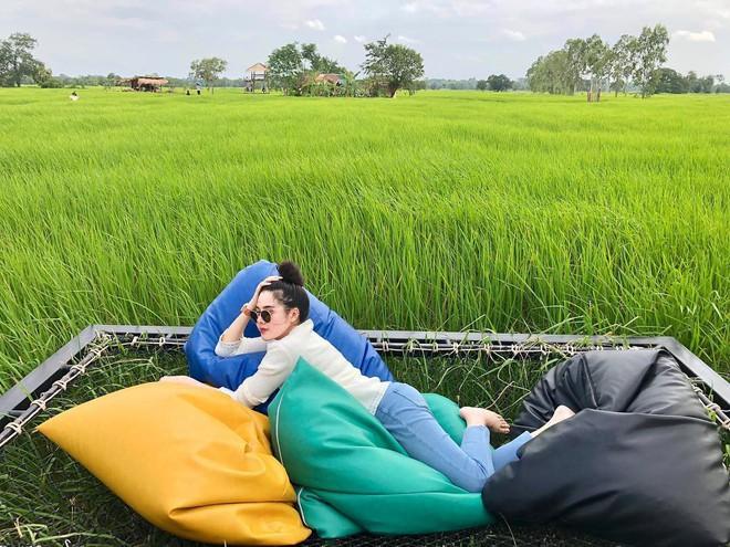 Quán cà phê rộng 30ha, view ruộng lúa bao la xanh ngát ở Thái Lan đang gây sốt rần rần - Ảnh 3.