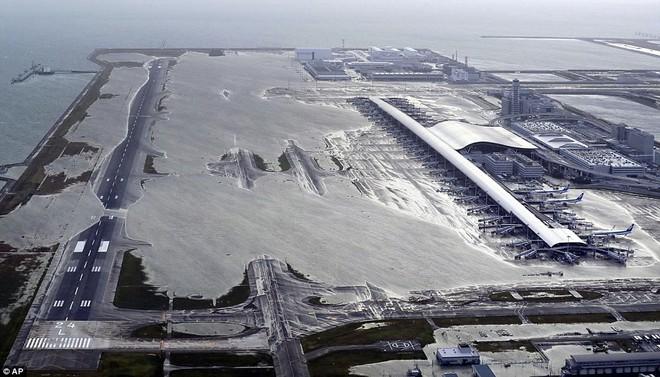 Siêu bão mạnh nhất 1/4 thế kỷ của Nhật: Hàng trăm ô tô cháy ngùn ngụt trong biển lửa - Ảnh 3.