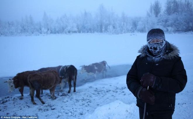 Ngôi làng Cực lạnh từng chịu đựng nhiệt độ -71,2 độ C - Ảnh 1.
