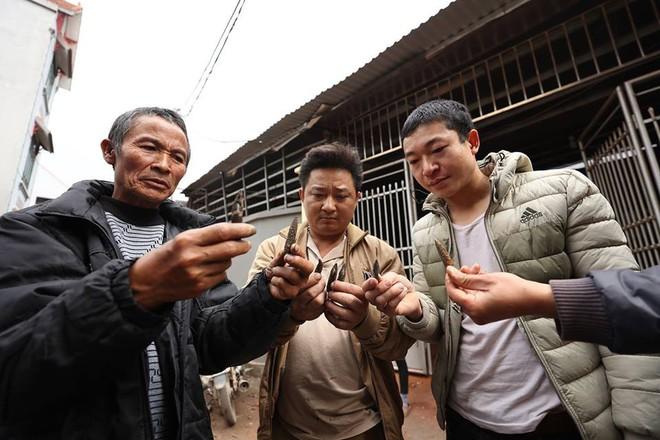 Nhặt vỏ đạn sau vụ nổ ở Bắc Ninh, người đàn ông bị nổ nát bàn tay - Ảnh 6.