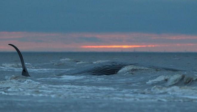 Bí ẩn cặp xoáy nước tử thần trên đại dương: Thách thức giới khoa học - Ảnh 4.