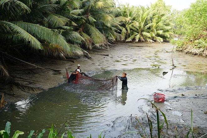 Xem người Sài Gòn thả lưới, bắt cá dịp giáp Tết - Ảnh 2.