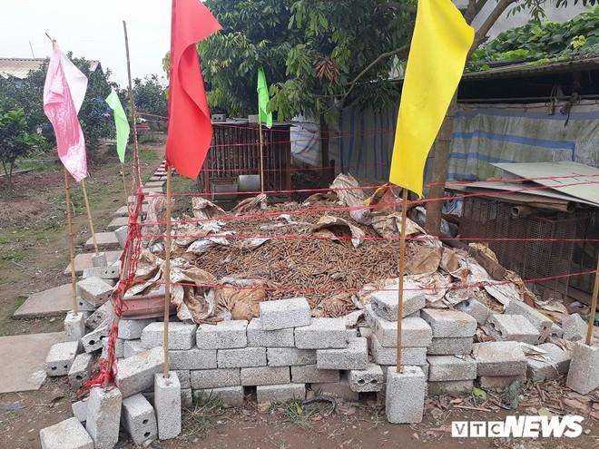 Cận cảnh gần 6 tấn đầu đạn trong vườn nhà dân ở Hưng Yên - Ảnh 2.