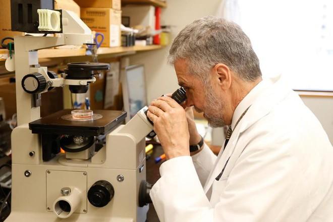 Sự thật về bức ảnh chú chuột có đôi tai người trên cơ thể và thí nghiệm khoa học gây nhiều tranh cãi - Ảnh 1.