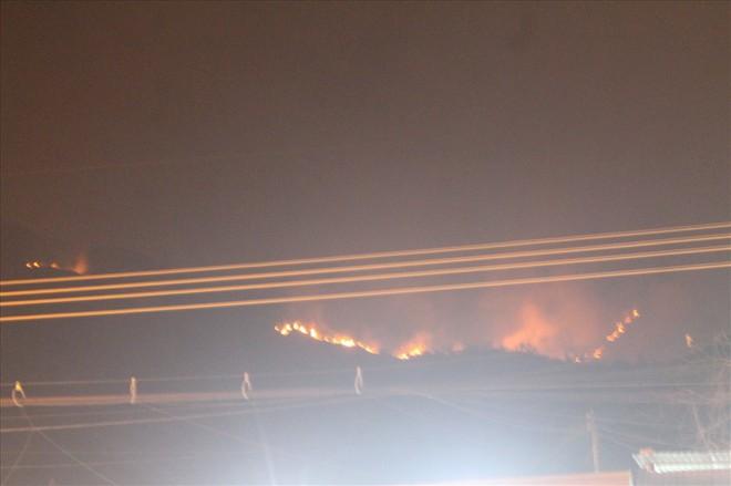 Khánh Hòa: Cháy lớn trên núi, chủ tịch phường vừa ngồi quán cà phê vừa đuổi báo chí - Ảnh 1.
