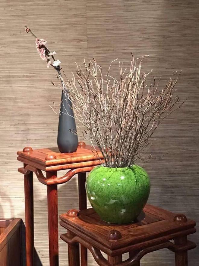 Bà nội trợ Hà thành 'phát sốt' với hoa 'đỗ quyên ngủ đông' như bó củi khô giá 200 nghìn đồng  - Ảnh 2.