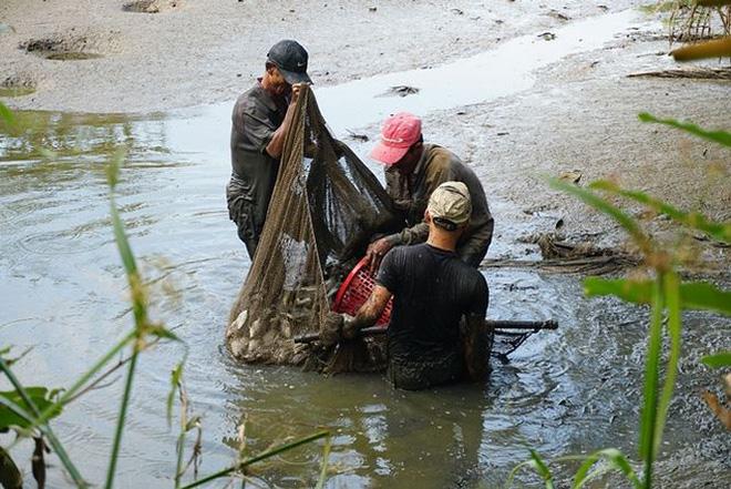 Xem người Sài Gòn thả lưới, bắt cá dịp giáp Tết - Ảnh 11.