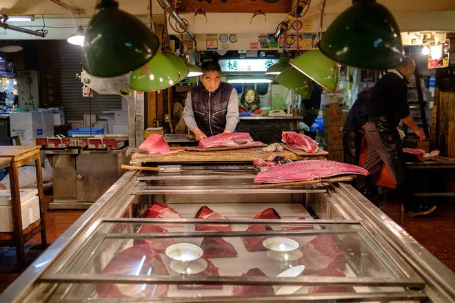 Trong chợ cá lớn nhất thế giới tại Nhật Bản: Mỗi con cá ngừ được bán với giá bằng vài ngôi nhà Nhật Bản - Ảnh 12.