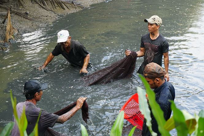 Xem người Sài Gòn thả lưới, bắt cá dịp giáp Tết - Ảnh 3.