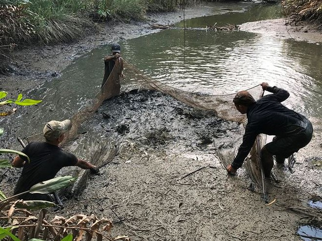 Xem người Sài Gòn thả lưới, bắt cá dịp giáp Tết - Ảnh 4.