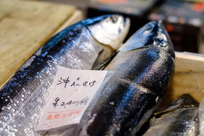 Trong chợ cá lớn nhất thế giới tại Nhật Bản: Mỗi con cá ngừ được bán với giá bằng vài ngôi nhà Nhật Bản - Ảnh 4.