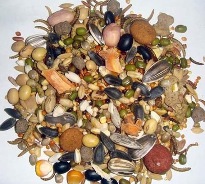 Những thực phẩm có chất gây dị ứng - Ảnh 6.