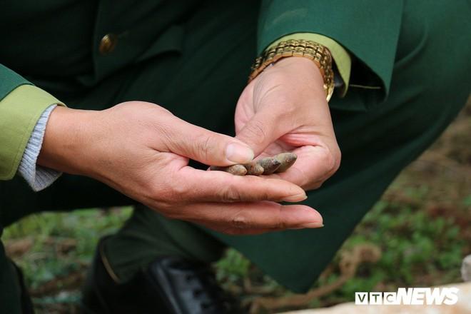 Cận cảnh gần 6 tấn đầu đạn trong vườn nhà dân ở Hưng Yên - Ảnh 7.