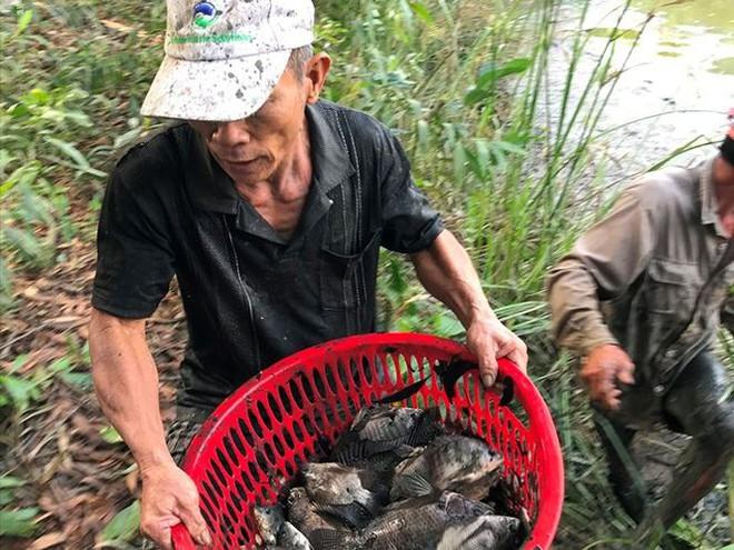 Xem người Sài Gòn thả lưới, bắt cá dịp giáp Tết - Ảnh 7.