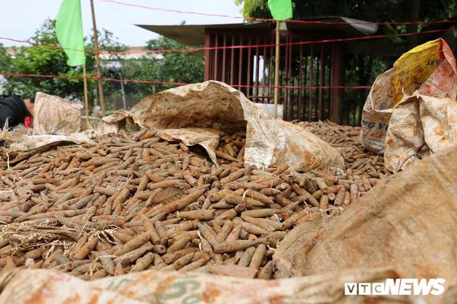 Cận cảnh gần 6 tấn đầu đạn trong vườn nhà dân ở Hưng Yên - Ảnh 8.