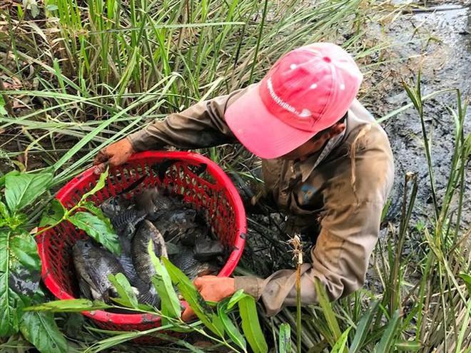 Xem người Sài Gòn thả lưới, bắt cá dịp giáp Tết - Ảnh 10.