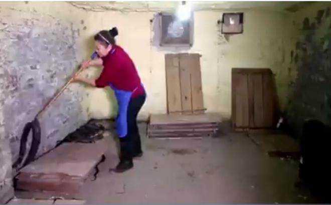 VIDEO cận cảnh cách chăm sóc 1.000 con rắn mỗi ngày của 'nữ hoàng rắn hổ mang'