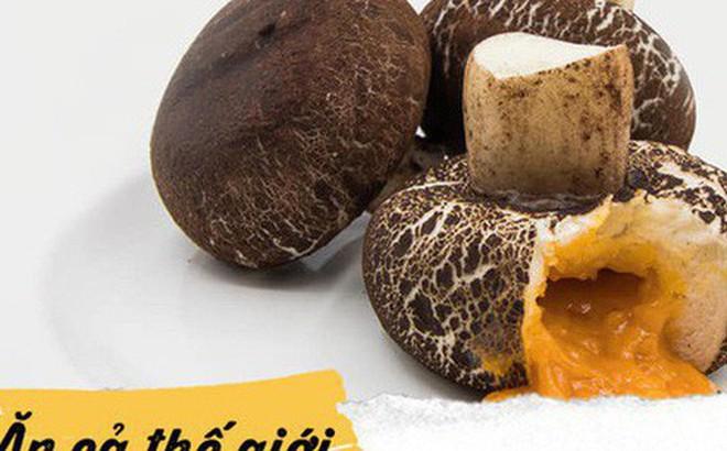 Món bánh bao hình nấm mới ở Thái Lan có gì đặc biệt mà khiến giới trẻ check-in rần rần