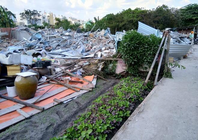 [ẢNH]: Khu đất vườn rau Lộc Hưng ở Tân Bình bị cưỡng chế, tan hoang như bình địa - Ảnh 10.