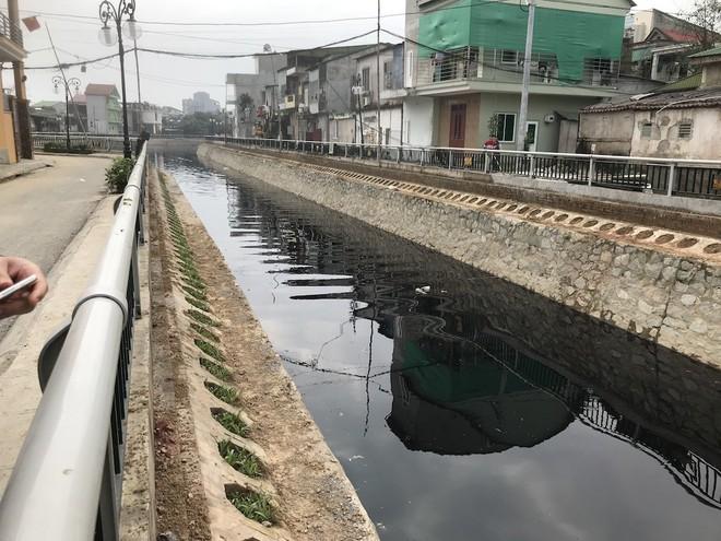 Nước kênh hào Thành cổ Vinh đen như mực, cá chết hàng loạt, dân lo sợ cầu cứu - Ảnh 1.