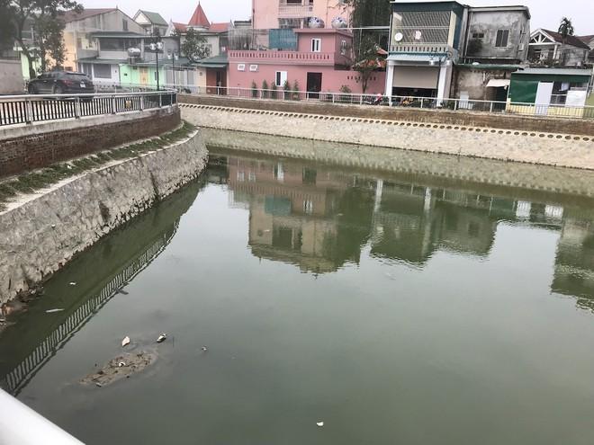Nước kênh hào Thành cổ Vinh đen như mực, cá chết hàng loạt, dân lo sợ cầu cứu - Ảnh 6.