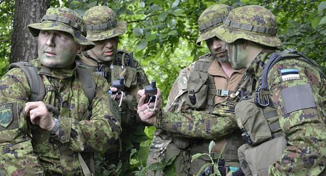 Trước ý kiến Estonia cần thủ sẵn đòn đánh vỡ mũi dành cho Nga, quan chức Nga phản ứng ra sao? - Ảnh 2.