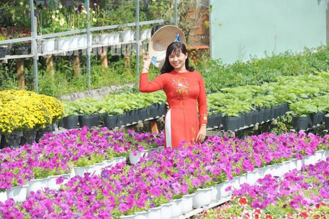Lão nông 70 tuổi tiết lộ lí do trồng toàn hoa kiểng màu tím, thu hơn 15 tỉ/năm - Ảnh 11.