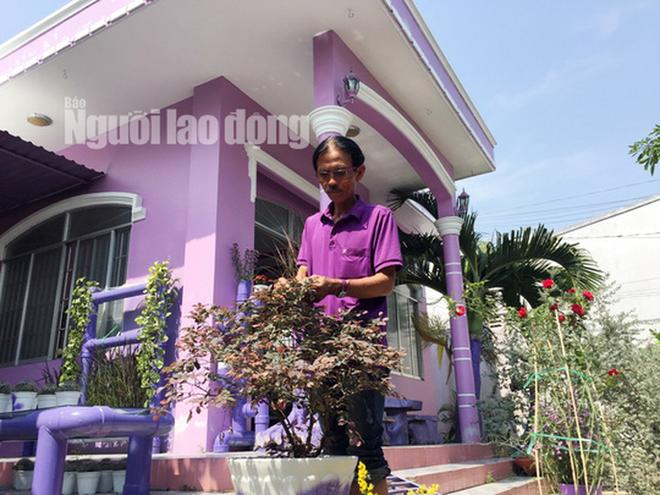 Lão nông 70 tuổi tiết lộ lí do trồng toàn hoa kiểng màu tím, thu hơn 15 tỉ/năm - Ảnh 12.