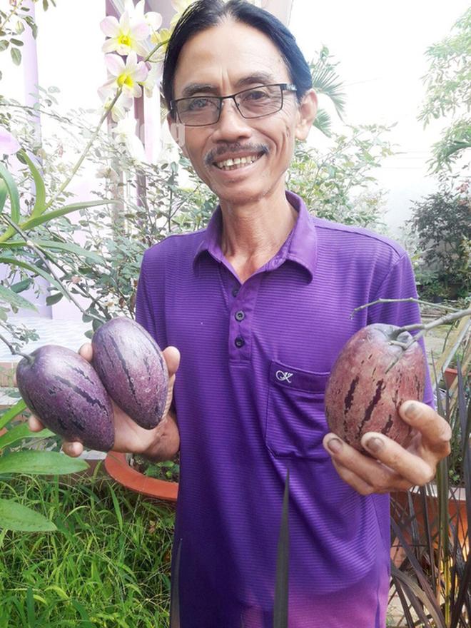 Lão nông 70 tuổi tiết lộ lí do trồng toàn hoa kiểng màu tím, thu hơn 15 tỉ/năm - Ảnh 15.