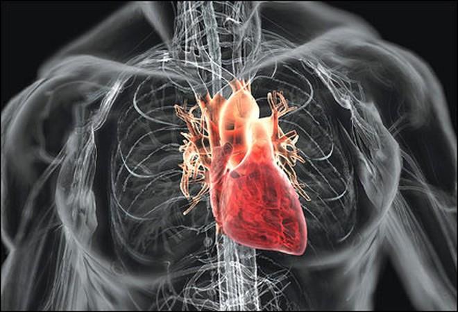 Thạc sĩ 25 tuổi bị nhồi máu cơ tim tử vong: BS khuyên điều cần làm khi có người đau tim
