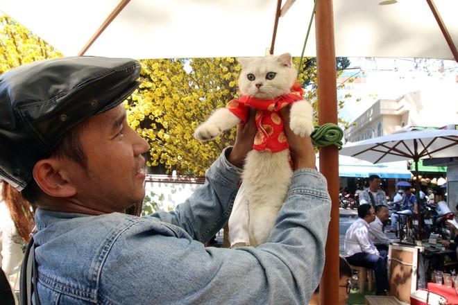 Trai xinh gái đẹp xúng xính chụp ảnh dọc phố ông đồ ở Sài Gòn - Ảnh 11.