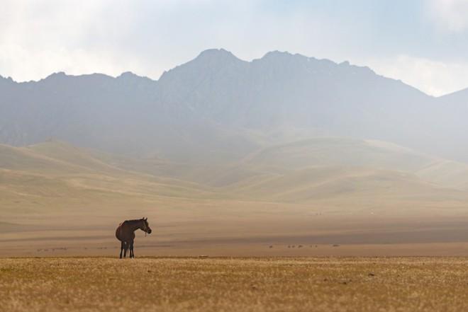 """Thiên nhiên hùng vĩ ở Kyrgyzstan đẹp đến """"nghẹt thở"""" - Ảnh 18."""