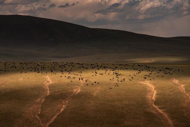 """Thiên nhiên hùng vĩ ở Kyrgyzstan đẹp đến """"nghẹt thở"""" - Ảnh 6."""