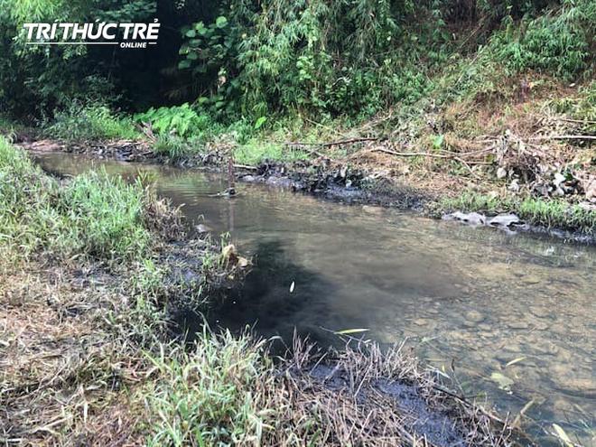 Dòng suối đầu nguồn nhà máy nước sông Đà: Dầu thải đặc quánh, đổ qua phễu to cũng không chảy được - Ảnh 6.
